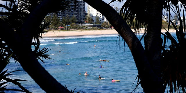 Surfers wade in the water waiting for waves off the Southern Gold Coast area of Greenmount Beach, Gold Coast, Friday, Dec. 15, 2017. A shark fatally mauled a man on Tuesday on Australia's Gold Coast city tourist strip, an official said. (David Clark/AAP via AP)