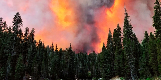 Smoke from the Creek Fire wells behind a ridge by Huntington Lake on Saturday, September 5, 2020 in Huntington Lake, California.