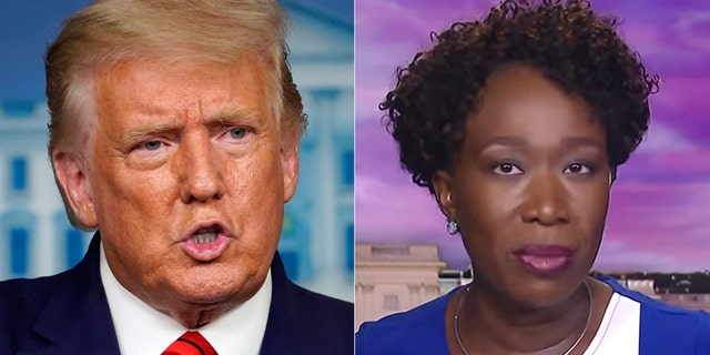 President Trump called on MSNBC to fire host Joy Reid.