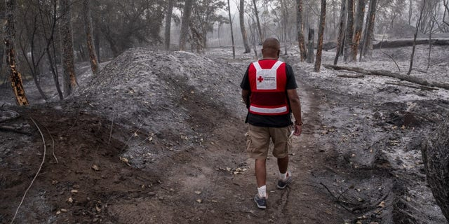 The Red Cross has mobilized massive relief efforts across California, Oregon and Washington, and has been working 24/7 to ensure that people have a safe place to stay, food and comfort during this time of uncertainty.