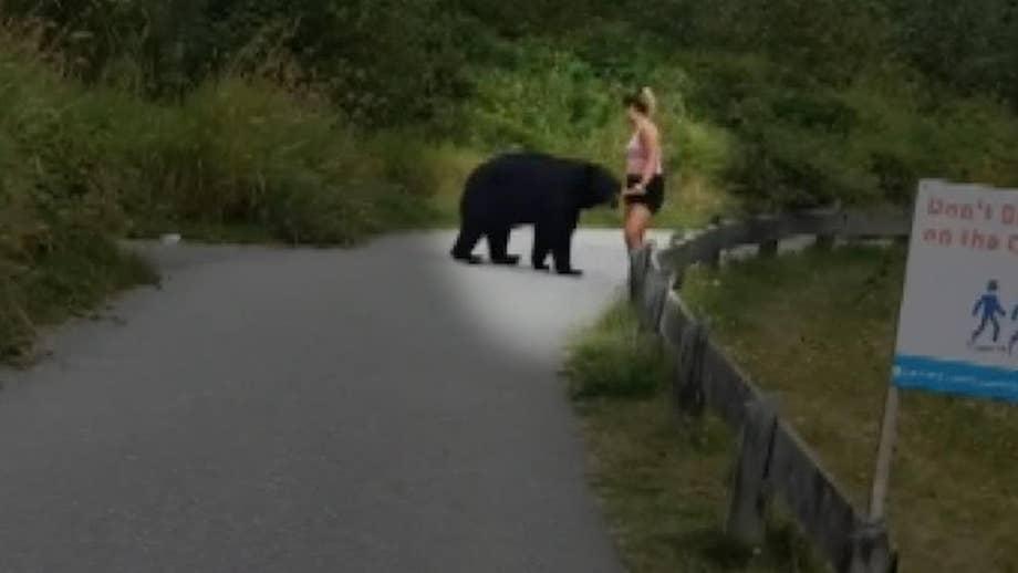 Bear surprises jogger on running trail, takes swipe at her leg in tense video