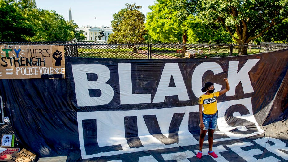 Black Lives Matter organization deletes page calling for 'disruption' of nuclear family
