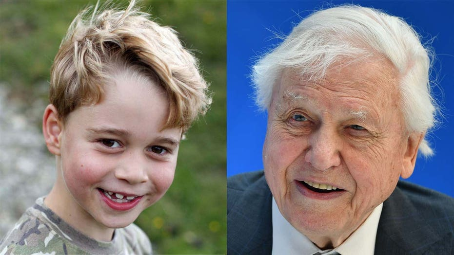 Prince George receives special gift from documentarian David Attenborough in new royal family photos