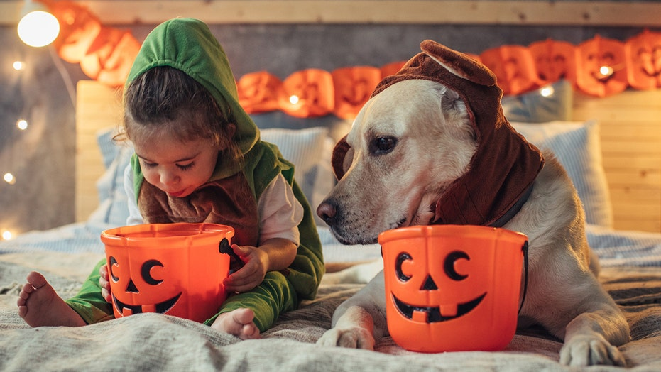 Hershey's launches Halloween resource, maps out safe counties for trick-or-treating