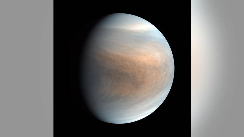 NASA administrator on significance of possible sign of life on Venus