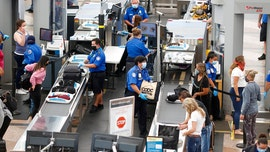 TSA screens 1 million passengers in a single day, marking busiest travel day since March