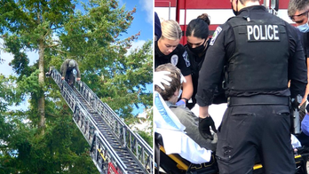 Seattle-area suspect, 32, talked down from tree after crashing motorcycle, carjacking vehicle: police
