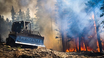 Colorado wildfires force closures of national forests due to 'unprecedented and historic' conditions