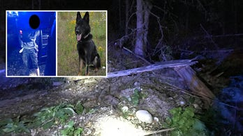 Police K-9 tracks down suspected car thief hiding in Washington state woods