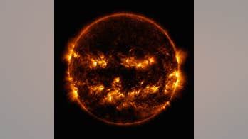 NASA image shows spooky 'Halloween' sun