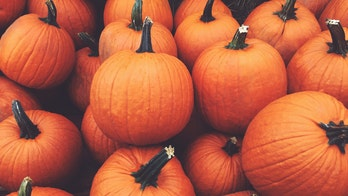 What is a 'Thankful Pumpkin'? And how can you make one with your family?