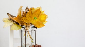 San Francisco grocery store selling $15 bouquets of 'organic' fall leaves