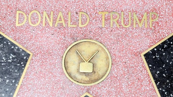 Trump's Walk of Fame star vandalized again, person turns himself in: report