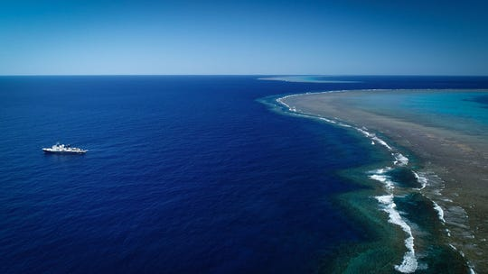 Coral reef the size of the Empire State Building found off Australia's coast