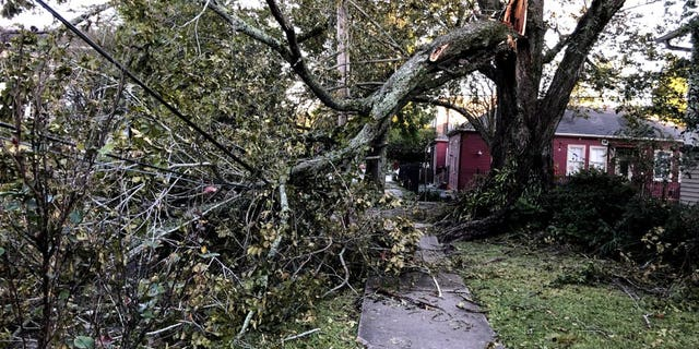 Man electrocuted in U.S. by downed power line after Hurricane Zeta strikes