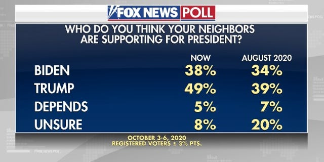 More voters think neighbors backing Trump over Biden: Fox News poll - 107 7