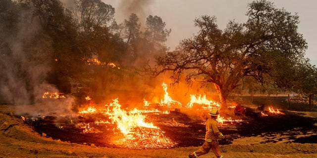 A firefighter runs past flames while battling the Glass Fire in a Calistoga, Calif., vineyard Thursday, Oct. 1, 2020.
