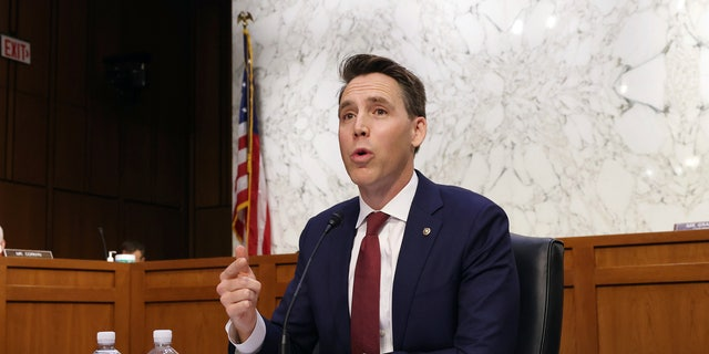Sen. Josh Hawley, R-Mo., speaks during the confirmation hearing for Supreme Court nominee Amy Coney Barrett at the Senate Judiciary Committee on Capitol Hill in Washington, Monday, Oct. 12, 2020. (Win McNamee/Pool via AP)