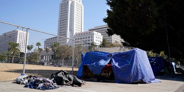 A homeless person's tent stands just outside Grand Park with Los Angeles City Hall in the background in Los Angeles.