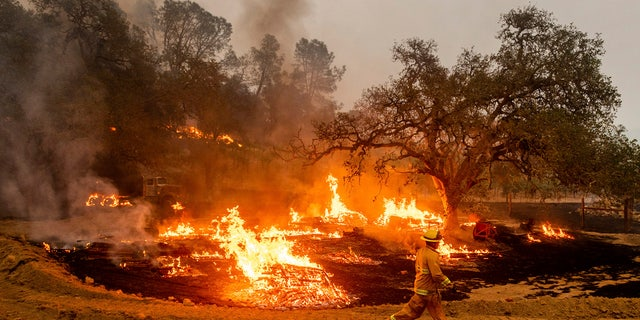 In this Oct. 1, 2020, file photo, a firefighter runs past flames while battling the Glass Fire in a Calistoga, Calif., vineyard. AP Photo/Noah Berger, File