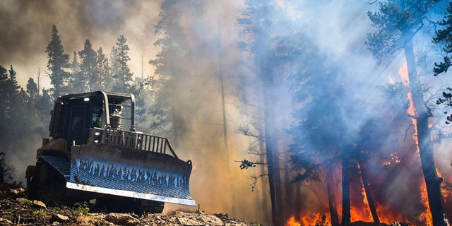 The Cameron Peak fire has burned over 206,009 acres and is the largest in Colorado state history.