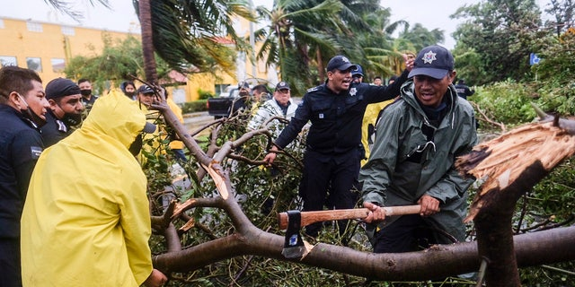 Firemen remove a tree toppled by Hurricane Delta in Cancun, Mexico, early Wednesday, Oct. 7, 2020.