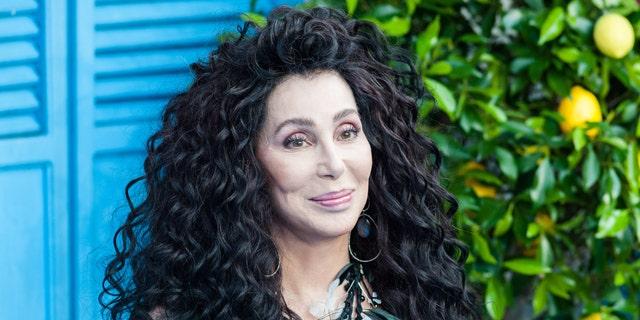 Cher publicly backed Biden in February.(Wiktor Szymanowicz / Barcroft Media via Getty Images)