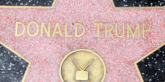 Donald Trump's star of the Hollywood Walk of Fame.