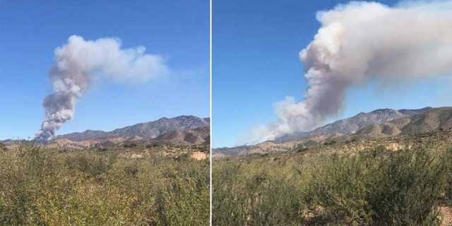 Horse Fire via Arizona State Forestry Twitter