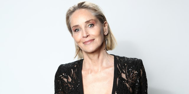 Sharon Stone urged fans to vote for Joe Biden and Kamala Harris in the upcoming election. (Photo by Rich Polk/Getty Images for IMDb)