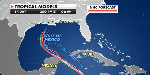 Forecast models showing the track of Hurricane Delta