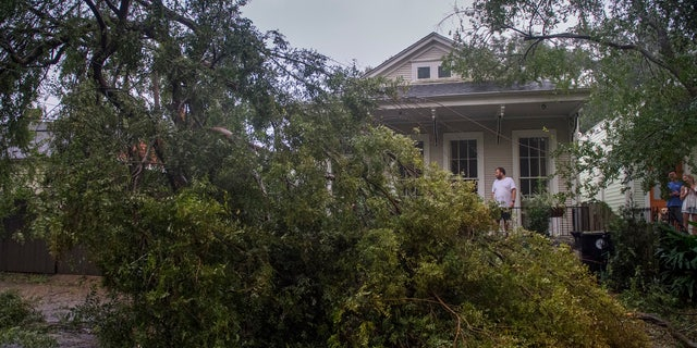 People look at a downed part of a tree after Hurricane Zeta made landfall, 星期三, 十月. 28, 2020, in New Orleans.