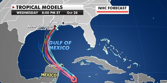 Forecast models showing the track of Tropical Storm Zeta.
