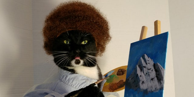 A Washington man has revealed the tricks of the trade for dressing up his fierce felines in elaborate costumes.