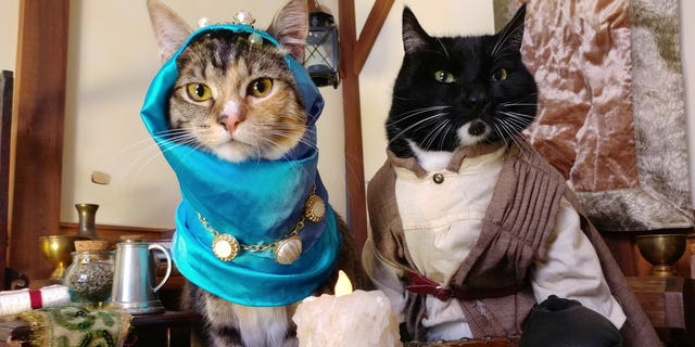 Following Nak's passing two years ago, Freyu's cats Fawkes and Pike have valiantly carried the torch by rocking the cosplay costumes, Freyu said.