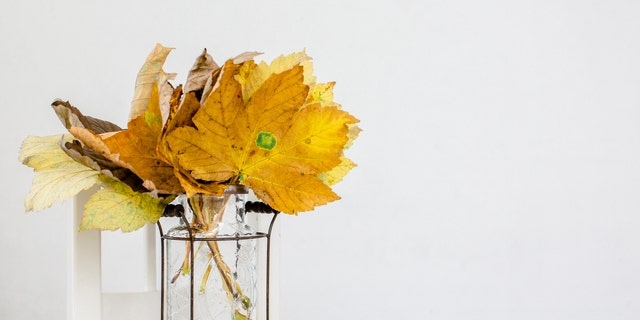A California grocer is selling bouquets of fall leaves for $15 a pop to San Franciscans famished for foliage this year.