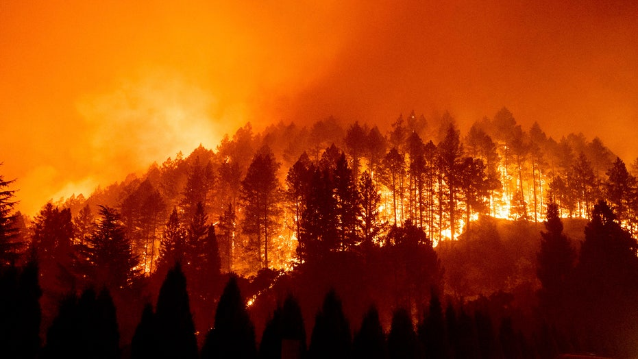 California heat wave prompts power shutdowns, fire danger