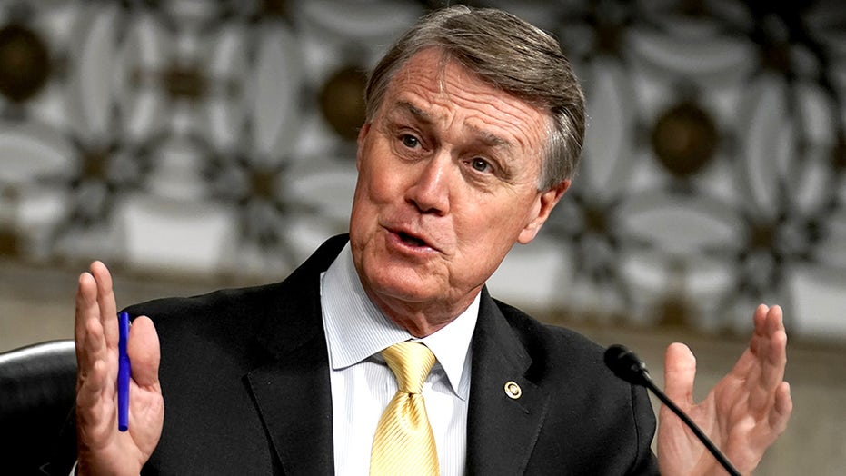 Who is David Perdue? 8 things to know about the Georgia senator