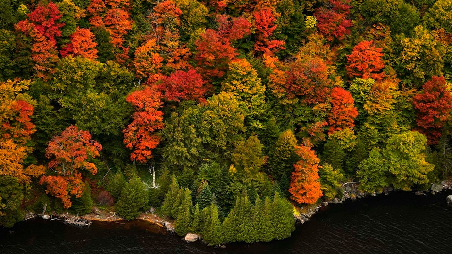 Fall foliage in New England impacted by 'extreme drought,' recent storms