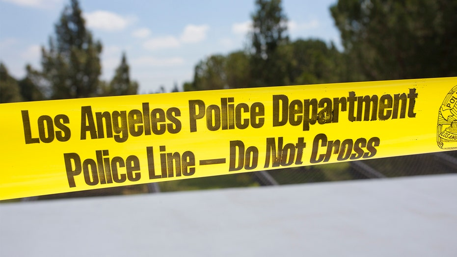 LAPD chief says Los Angeles on track to surpass 300 homicides, highest in over a decade