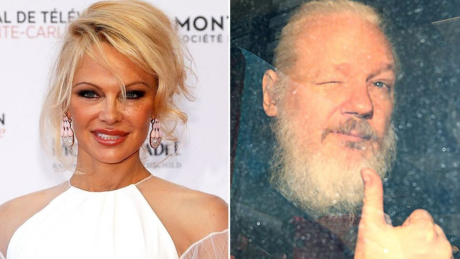 Pamela Anderson reacts to Julian Assange extradition rejection with message of hope: 'The fight is not over'