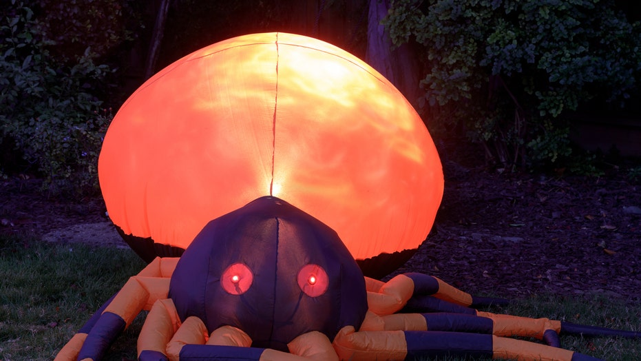 New York home's giant Halloween spider décor goes viral: 'That's how you keep kids away'