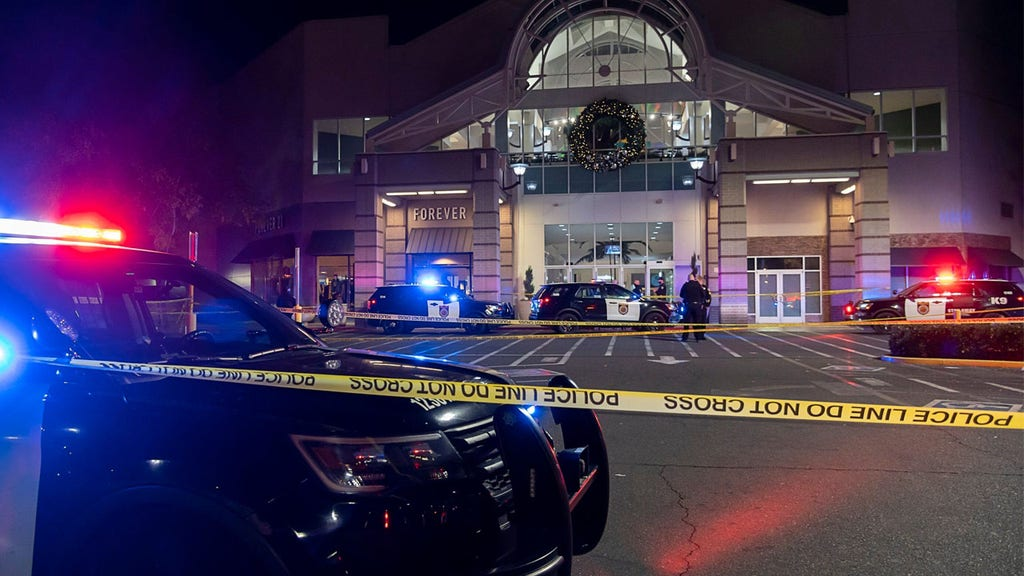 Second teen dies after mall shooting, police searching for suspect
