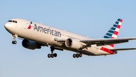 American Airlines plane damaged after reportedly hitting bird, returns to airport