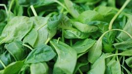 Baby spinach recalled over salmonella concerns