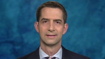 Tom Cotton slams Biden's 'unity' platform, points to admin picks