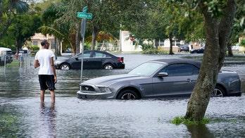 Manatee surprises Florida homeowner during Tropical Storm Eta