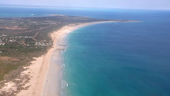 Shark attack in Australia kills 55-year-old man, marks 8th fatality this year