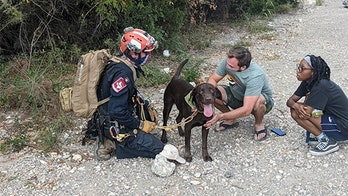 Texas paramedic rescues dog that fell off 70-foot cliff