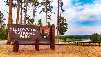 Yellowstone, Grand Teton National Parks see record visitors in October